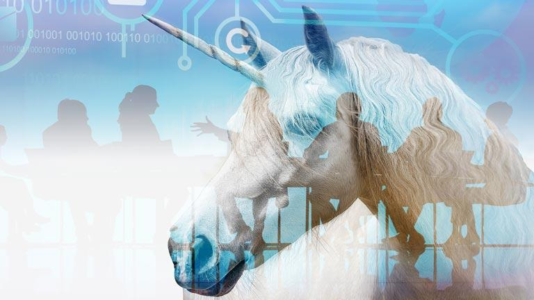 The Unbridled Unicorn and Quest for Corporate Governance Standards | BoardBookit
