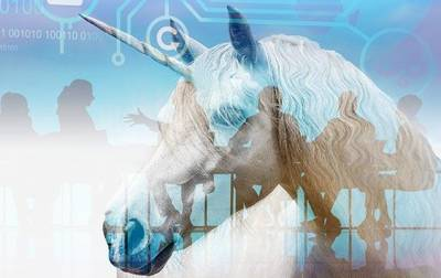 The Unbridled Unicorn and Quest for Corporate Governance Standards vcard
