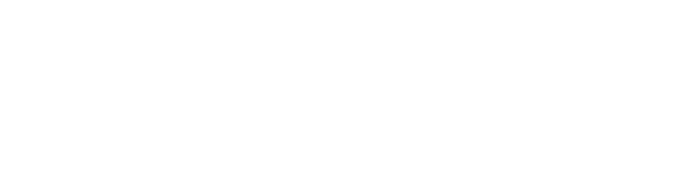 Governance Partners Group Logo White